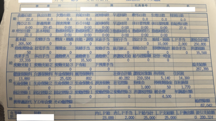 ヤマダ電機の給与明細【ガチ画像】・年収・ボーナス・評判