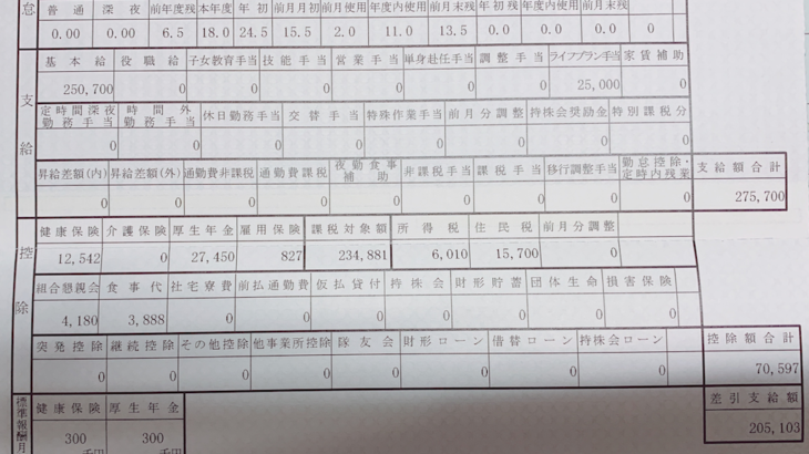 大日精化工業の給料明細【ガチ画像】・年収・ボーナス・評判