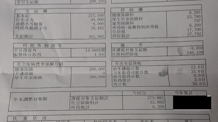 ディアンドアイ情報システムの給与明細【ガチ画像】・年収・ボーナス・評判