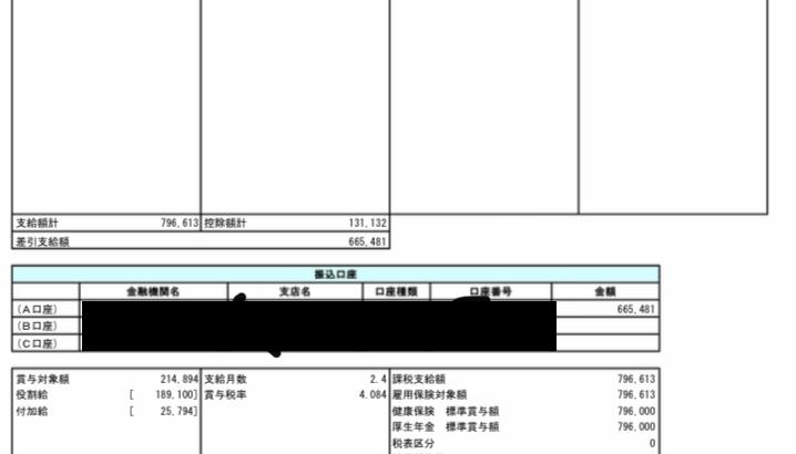 損害保険ジャパン日本興亜のボーナス明細【ガチ画像】社員からの投稿